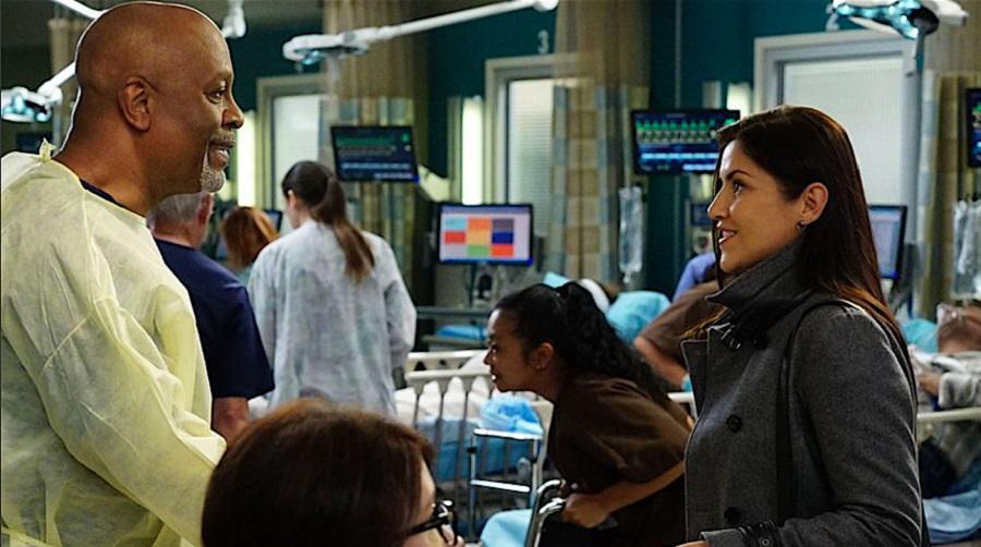 webber and winnick Greys Anatomy midseason finale: Is Amelia gone forever?