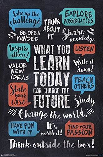 Trends International What You Learn Wall Poster 22.375″ X 34″