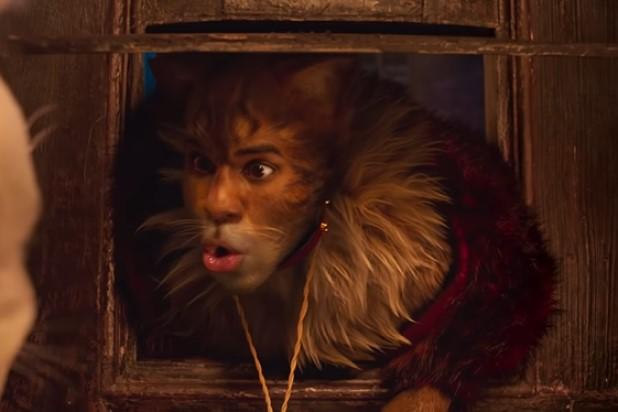 Jason Derulo Cats 2019