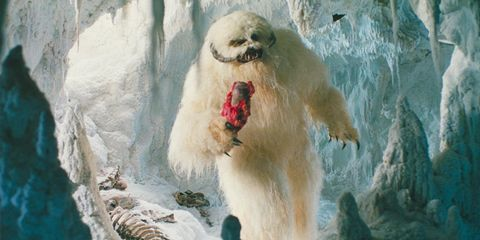 wampa in the empire strikes back